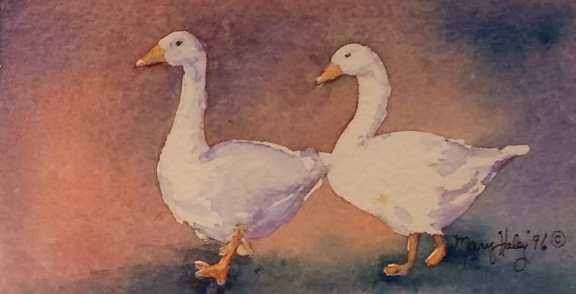 Geese - Watercolor Painting by Mary Haley-Rocks