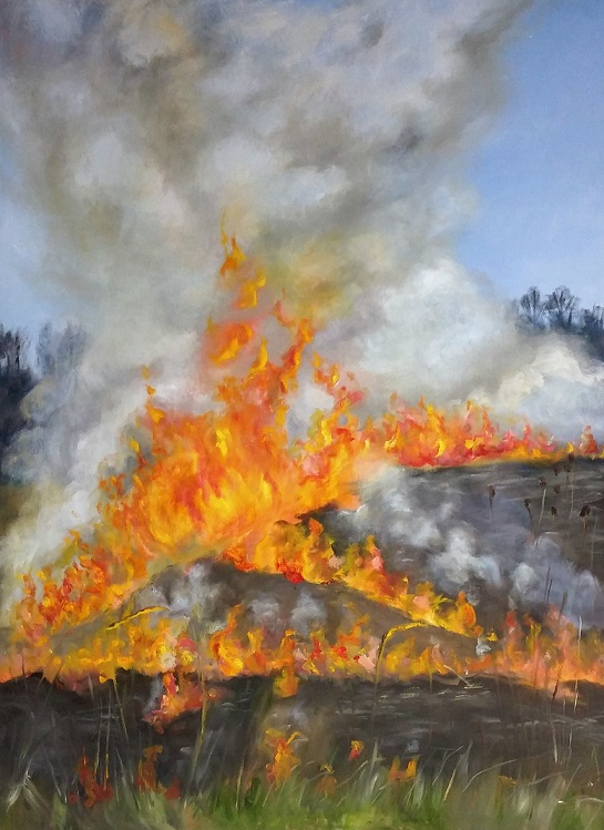 Prairie Burn  - Oil painting by Peg Vasil
